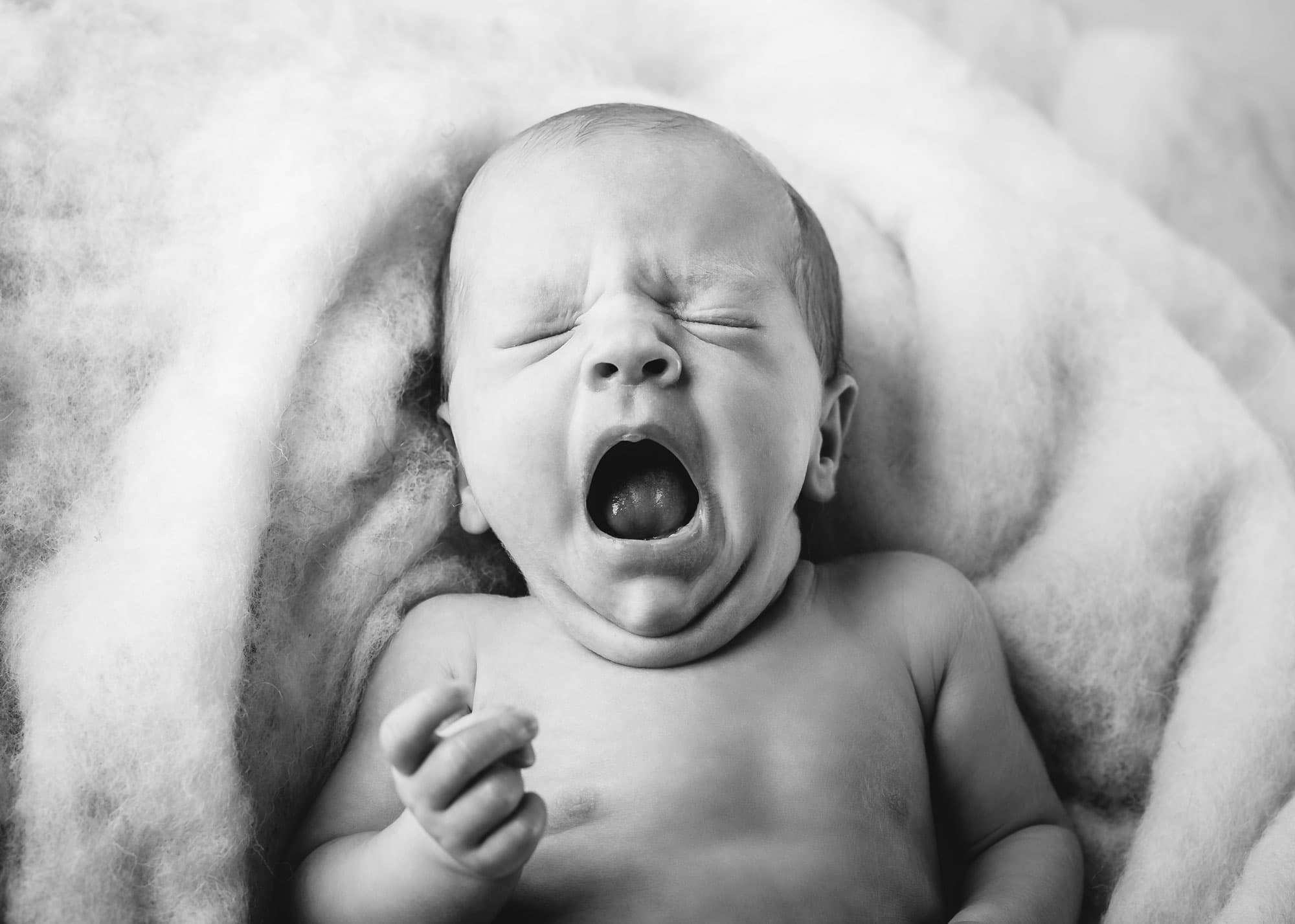 Babyfotografie Dresden Babyfotos Babyfotograf Babyshooting Fotograf Dresden